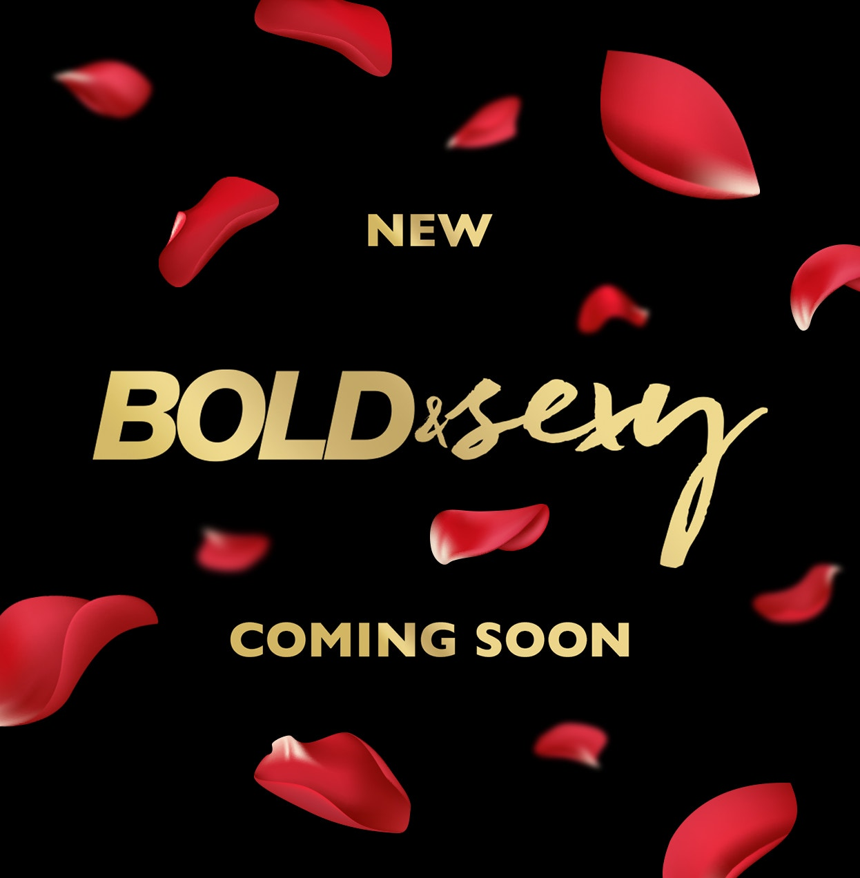 New Bold & Sexy | Coming Soon!